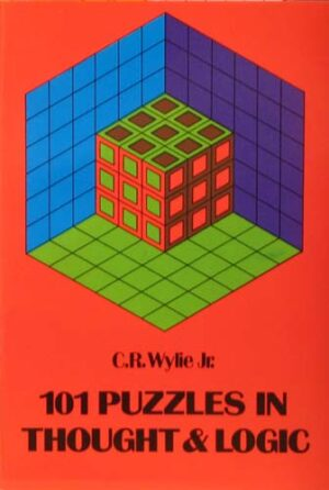 101 PUZZLES IN THOUGHT & LOGIC